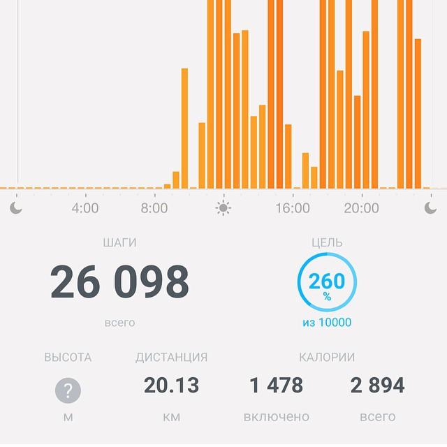 Вчера был день-рекордсмен — 26 098 шагов!